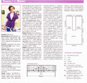 Фиолетовый жилет2